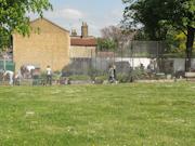 CEB volunteer day 15-5-15 Peckham London-2