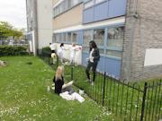 CEB volunteer day 15-5-15 Peckham London-22